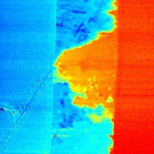 2 Nanotubes network deposited between 2 electrodes, EFM mode, 65µm