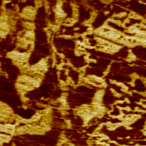 PZT, PFM mode, 10µm