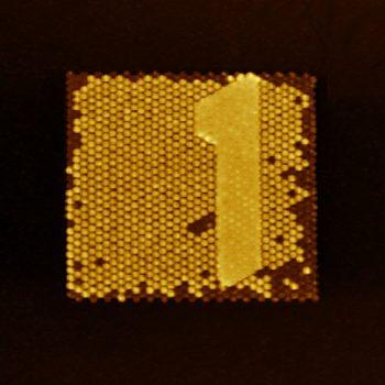 Litho, oscillating mode, 40µm